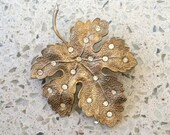 Vintage Gold Toned with 19 inset inlay Crystal Rhinestones Maple Leaf Brooch