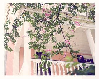 Pink, Spring, Flowers, Nature, 8x10, Fine Art print, Shabby Chic, Pastel, Photography, Romance, Balcony
