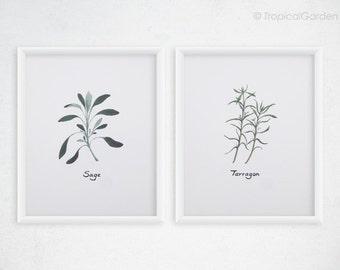 Herbs Kitchen Art - Any TWO Herbs Watercolor Print Set / 8x10 OR 8x11 Kitchen Print, Kitchen Decor