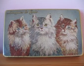 1930's Droste Tin Candy Box, Cat, Kitten