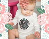 Baby Month Milestone Stickers, Girls Monthly Stickers, Monthly Bodysuit Stickers, Monthly Baby Stickers, Month by Month, Chalkboard (G223)