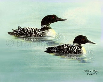 NOTE CARD, Loons, common loons, Ellen Strope, water, bird decor, loon decor, cabin decor, lodge decor, rustic decor, castteam, cards