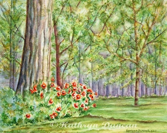 """Garden Poppies Landscape Painting - Original Watercolor matted to 9""""x12"""""""