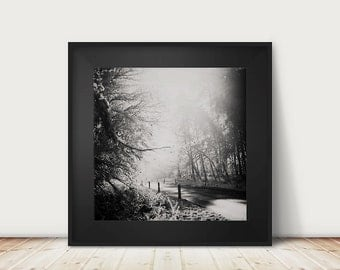 winter photograph tree photograph road photograph fog photograph black and white photography travel photography landscape photograph