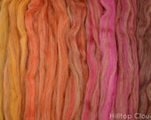 Canyon Gradient- Blended Spinning Fibre, Gradient Roving Set 140g 4.9oz