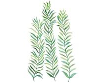 Green Vines 4x6 8x10 Print - Archival Quality Watercolor Green Plant Art Minimal Trendy Art - Sea Grass Print