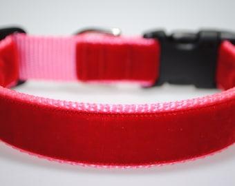 """Red Velvet on Pink 1"""" Wide Adjustable Dog Collar"""