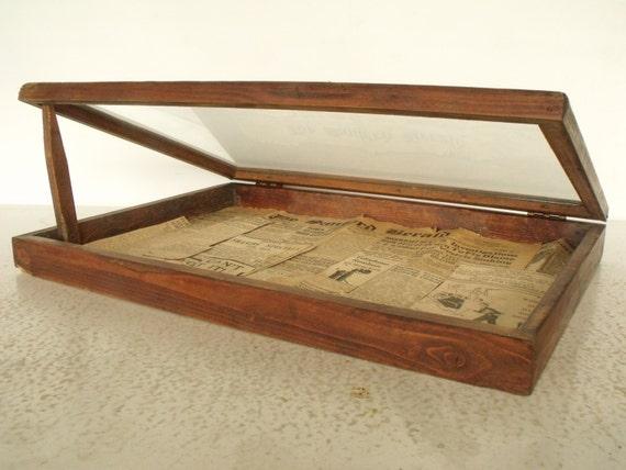 seller display case wood box glass lid vintage tabletop curio. Black Bedroom Furniture Sets. Home Design Ideas