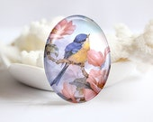 Bird Handmade Oval Photo glass Cabochons Image Glass Cover For Charm 30x40mm 18x25mm 13x18mm 10x14mm (P2366)
