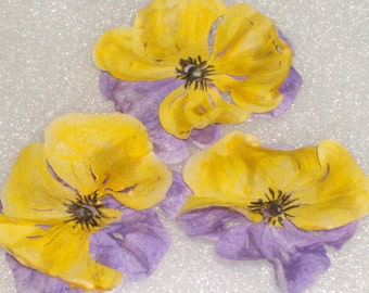 Wafer Paper Pansies (Pansy) Cake Toppers, Cupcake Toppers, Weddings, Bridal Shower Cakes, Birthday Cakes