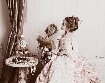SWANKY PRINTS ORIGINAL 5ft x 5ft Vinyl Photography Backdrop / Boudoir / White Elegant Victorian Wall