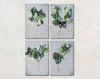 Butterfly Photography Set, Four Photograph Set, Green and Grey Photography, Still Life Art Print, Botanical Picture