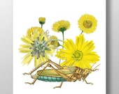 Yellow Flowers and Grasshopper Mixed media Decorative art painting drawing illustration portrait  Wall decor,Fine Art Prints, POSTER 8x10