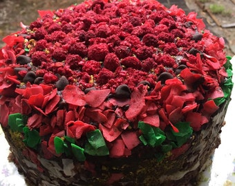 Vegan Chocolate  Coconut Walnut Raspberry  cake, love, animal free cruelty,no eggs,no dairy.