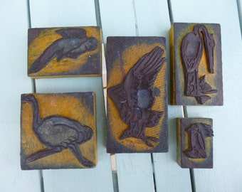 Bird Stamps Vintage School Set Circa 1940 French Educational stamps inc Large Eagle