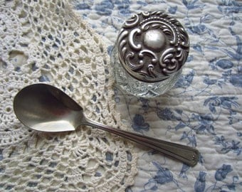 Sugar Spoon ~ Wm A Rogers ~ Nickel Silver
