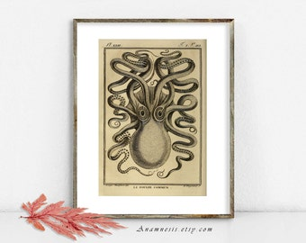 OCEAN OCTOPUS PRINT - Instant Download - printable antique octopus illustration to frame or transfer to totes, cards, tags, t-shirts etc.