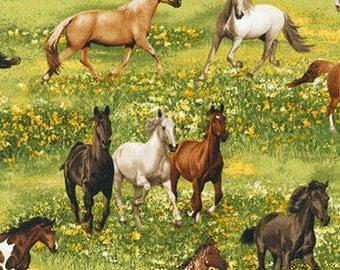 Robert Kaufman fabric Band of HORSES