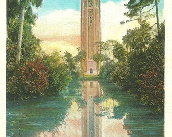 Post Card Florida Lake Wales Singing Tower White Border Linen Vintage