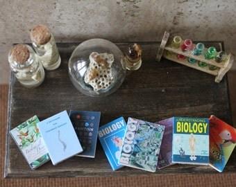 Dollhouse miniature set of 8 biology books