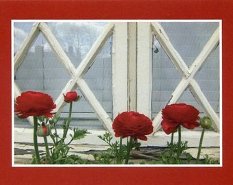 Windowbox posies - photo card