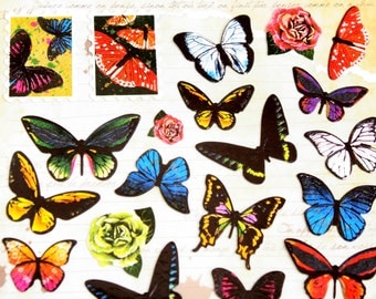 butterfly sticker set