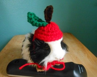 Guinea pig Apple Hat,  Crocheted  Bearded Dragon Apple Hat, Guinea pig clothes, tiny pet Costume, Halloween Guinea pig Costume