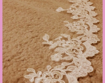 GORGEOUS Chapel  veil with beaded lace trim