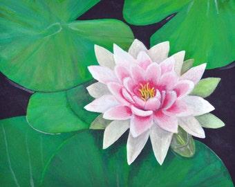 Pink Lotus Flower Wall Art - Water Lily Art Print - Pink Lotus Flower Print - Lotus Flower Art Print