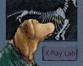 "Yellow Lab Art ""X-Ray"" Print Lab Dressed as Veterinarian Vet Doctor"