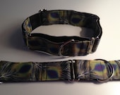 """Martingale Dog Collar 1.5"""" wide Peacock Pattern neck sz 19"""" up to 26"""""""