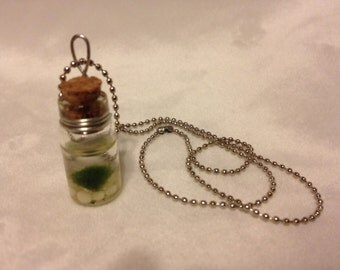Baby marimo necklace