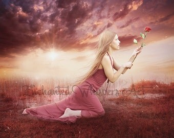 Emotional fantasy art/woman with rose/pink and purple art/sunset sunrise art/landscape artwork/emotional painting/red rose/fantasy decor