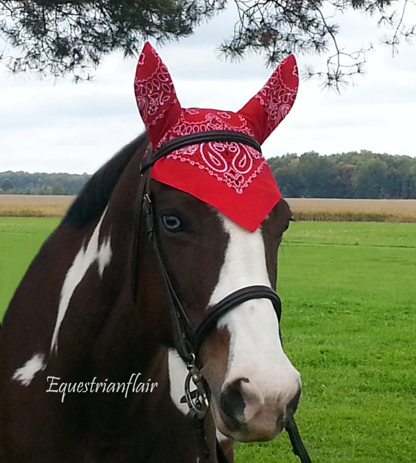 Free Crochet Horse Fly Mask Pattern : Horse Fly Bonnet Mask Bandana Horse Saddle Pad Tack Red