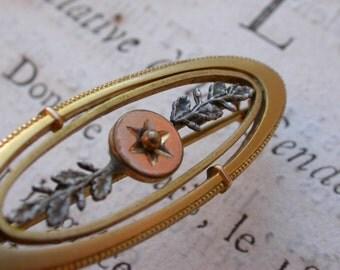 1900s French antique 18k yellow gold pink Vermeil brooch   antique gold brooch ornate art nouveau brooch star ball loui XIV decor