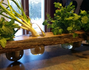 Wall Mounted Red Oak Herb Planter or Shelf, jars included!