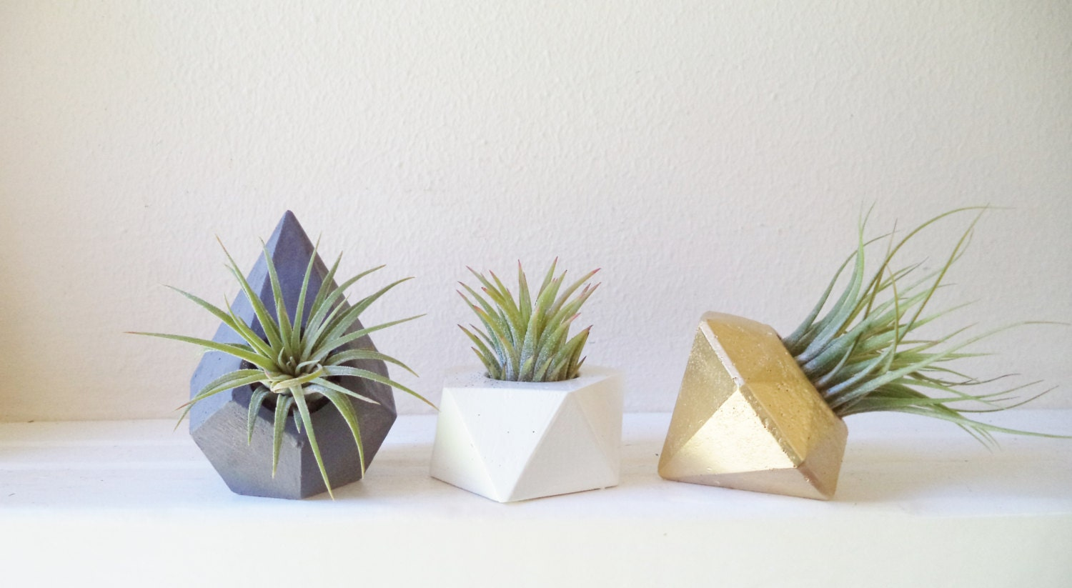 Mini plant wedding favors small air plant holders modern for Geometric air plant holder