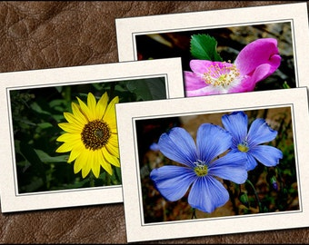 3 Wildflower Photo Note Cards - Flower Note Cards - 5x7 Flower Cards - Blank Wildflower Note Cards - Wildflower Greeting Cards (FL1)
