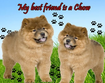 My Best Friend is a Chow Dog Fridge Magnet 7cm by 4.5cm