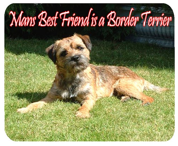 Border Terrier, Man's Best Friend Mouse Mat, Mouse Pad