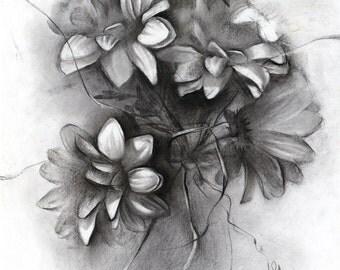 Flower drawing original - Gerbera charcoal drawing , paper