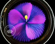 Tropical Purple Hibiscus 5x7 Paper Invitation Card