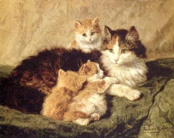 Contentment by Henriette Ronner Knip  8x10 Canvas Print. cats kittens, animals, pets, feline