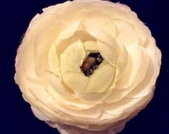 Vintage Ivory Bridal Flower Corsage Hair Clip
