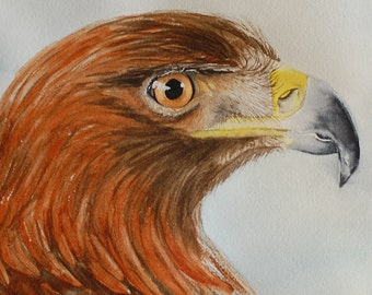"Eagle Painting  Original Watercolour Painting, Home decor, 8""x8"" Wildlife painting. Bird Painting"