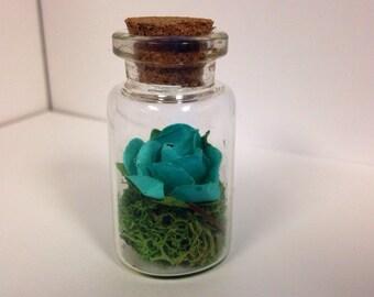 Rose in a bottle