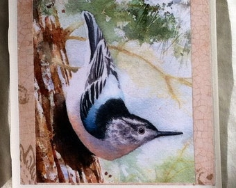 Nuthatch-4x4 ceramic tile wall hanging