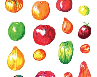 A4/A5 Print of Tomatoes Illustration