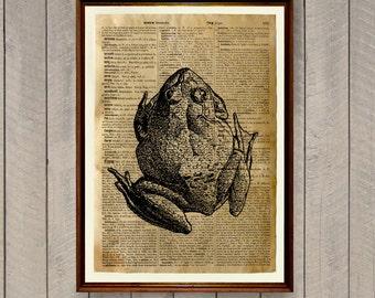 Lodge decor Animal poster Frog print Dictionary art WA703