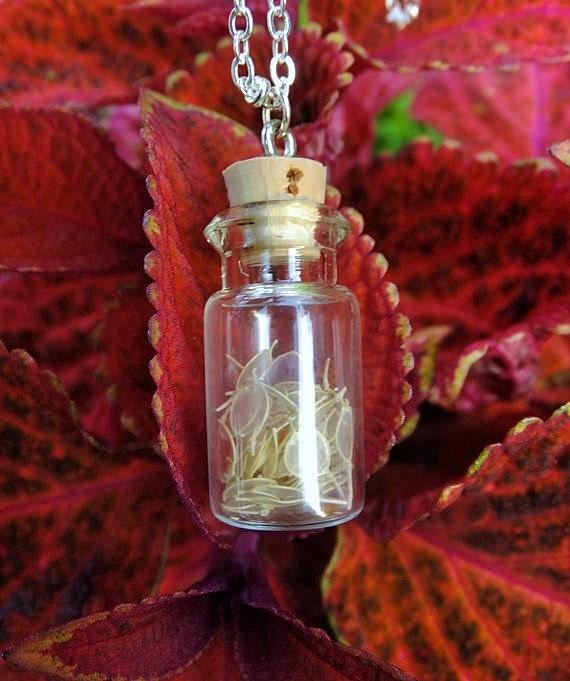 Bottle Necklace: Basket of Gold Seeds
